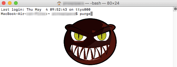 Lauching the purge command in Terminal (no, it's not that scary)
